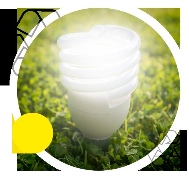 environmental fluorescent bulb collection